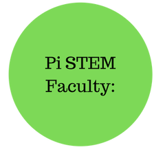 The faculty at PiSA